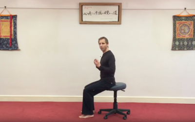 The Number One Seated Exercise
